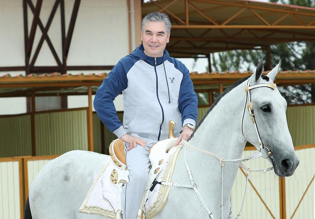 Бердымухамедов посетил Президентский ахалтекинский конный комплекс ...