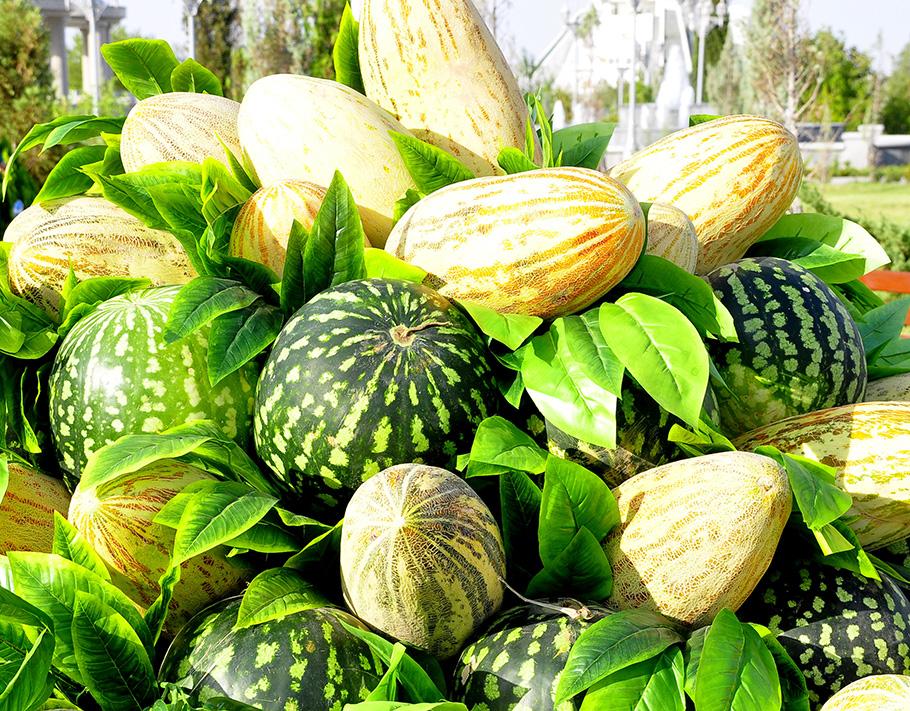 Москвичам рекомендовали не покупать арбузы после 1 октября ... | 711x910